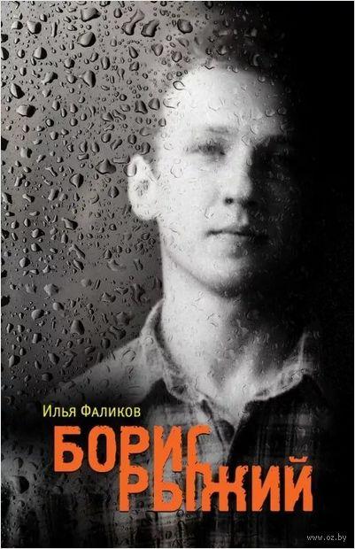 Борис Рыжий. Дивий камень — фото, картинка