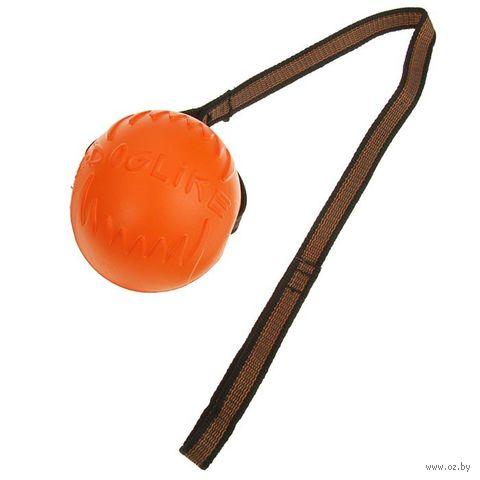 """Игрушка для собак """"Мяч с лентой"""" (10 см) — фото, картинка"""