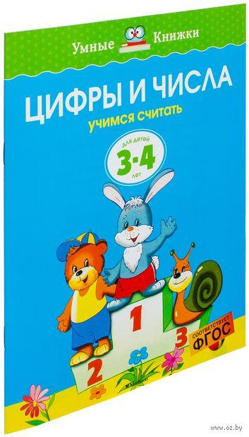 Цифры и числа. Учимся считать. Для детей 3-4 лет. Ольга Земцова