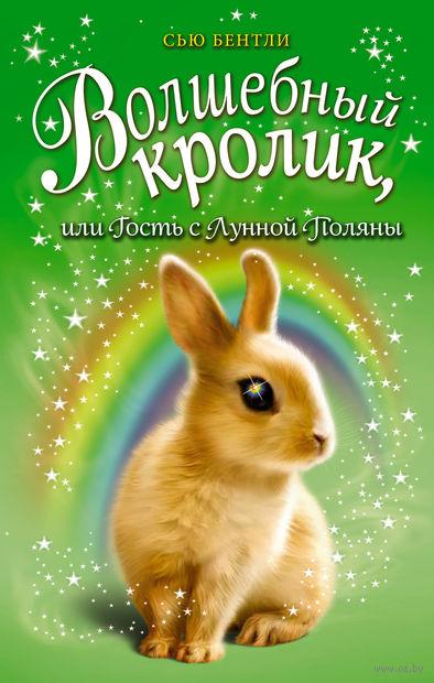 Волшебный кролик, или Гость с Лунной Поляны — фото, картинка