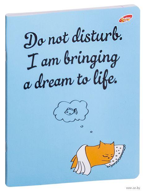"""Тетрадь в линейку """"Оранжевый кот"""" (24 листа; в ассортименте) — фото, картинка"""