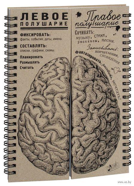 """Блокнот """"Мозги. Равные полушария"""" (А5) — фото, картинка"""