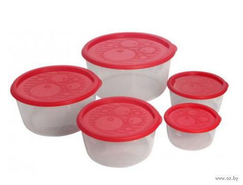 Набор контейнеров для хранения (5 шт.; арт. С264) — фото, картинка