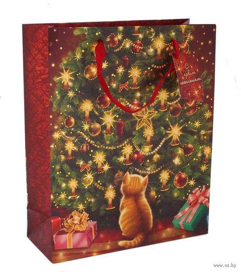 "Пакет бумажный подарочный ""Новогодний"" (26х32х10 см; арт. 10444361) — фото, картинка"