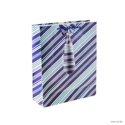 "Пакет бумажный подарочный ""Полоска"" (23х18х10 см; арт. 10535218)"