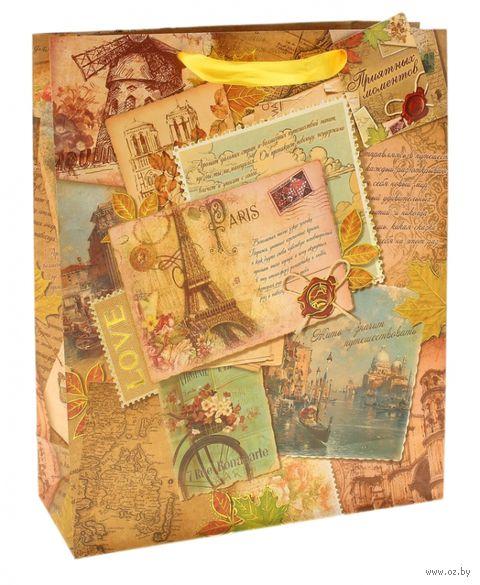 "Пакет бумажный подарочный ""Винтаж"" (12х15х5,5 см; арт. 10320892)"