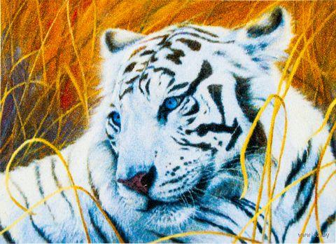 "Алмазная вышивка-мозаика ""Белый тигр"" (400x300 мм) — фото, картинка"