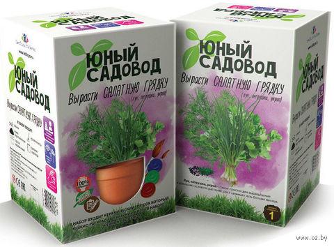 """Набор для выращивания растений """"Юный садовод. Салатная грядка"""" — фото, картинка"""