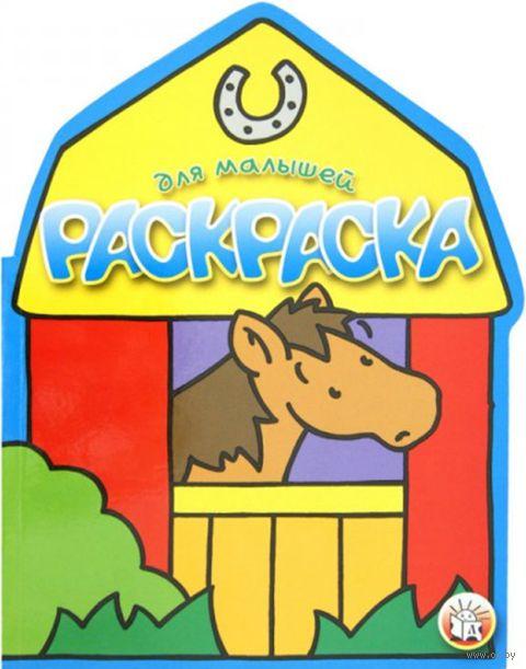 Лошадь. Раскраска для малышей — фото, картинка