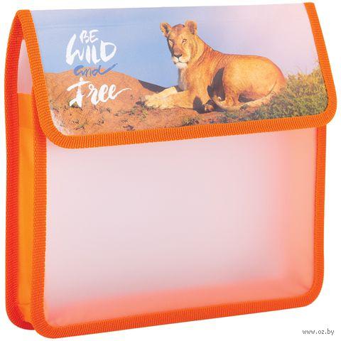 "Папка для тетрадей ""Be Wild and Free"" (А5) — фото, картинка"