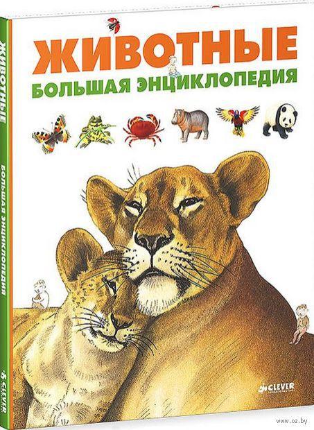 Животные. Большая энциклопедия. Дельфин Гравье-Бадреддин