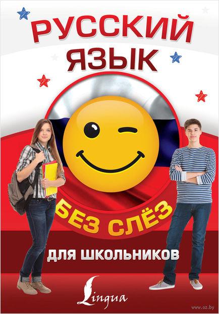 Русский язык для школьников без слёз — фото, картинка