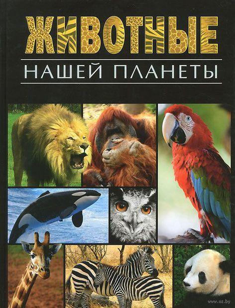 Животные нашей планеты — фото, картинка