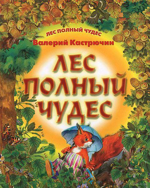 Лес полный чудес. Валерий Кастрючин