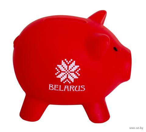 "Копилка ""Belarus"" (красная) — фото, картинка"