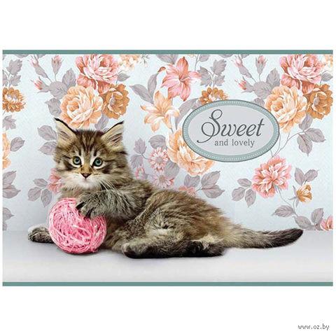 """Альбом для рисования А4 """"Sweet Pets"""" (12 листов)"""