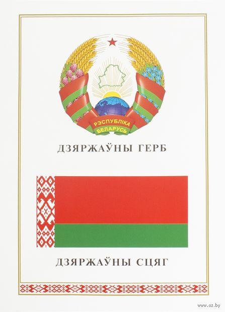 """Плакат """"Герб и Флаг Республики Беларусь"""" — фото, картинка"""