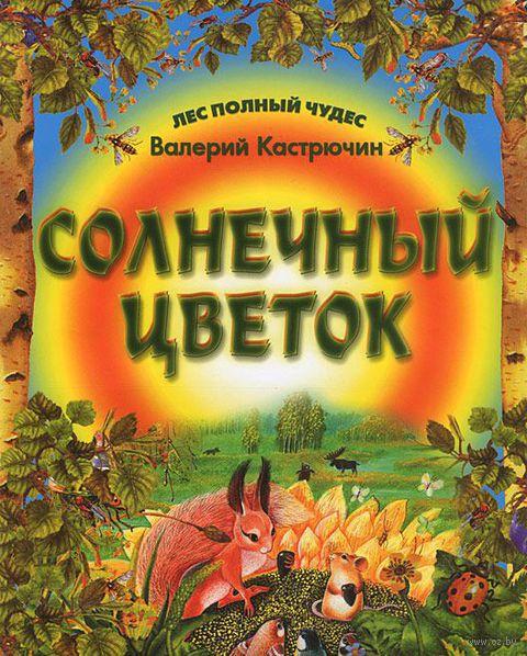 Солнечный цветок. Валерий Кастрючин