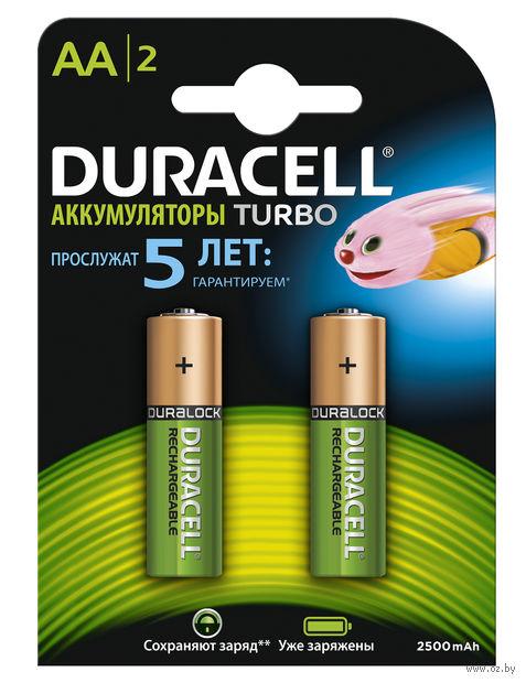 Аккумуляторы никель-металлгидридные Duracell AA HR06 2400mAh (2 шт)