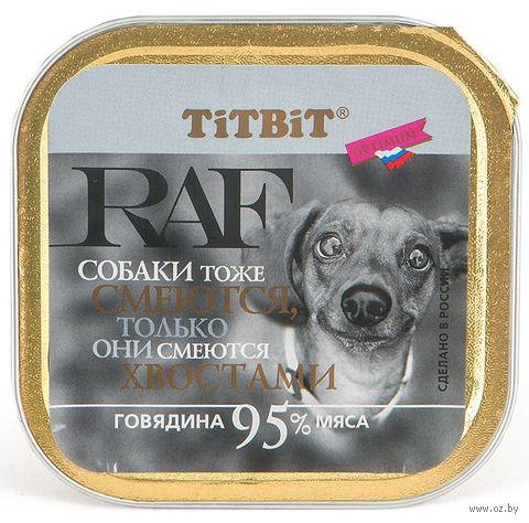 """Консервы для собак """"RAF"""" (100 г; говядина) — фото, картинка"""