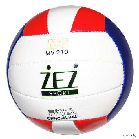 Мяч волейбольный (арт. MV210) — фото, картинка