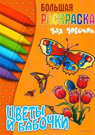 Цветы и бабочки. Раскраска — фото, картинка