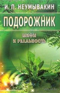 Подорожник. Иван Неумывакин