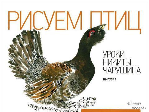 Рисуем птиц. Уроки Никиты Чарушина