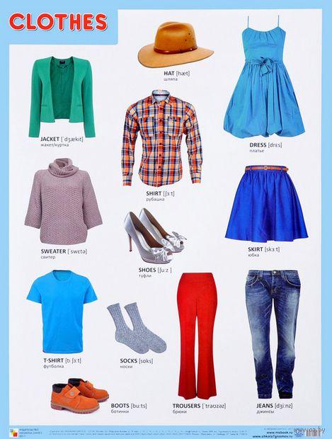 Clothes. Плакат — фото, картинка