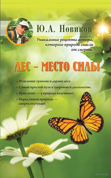 Лес - место силы. Юрий Новиков