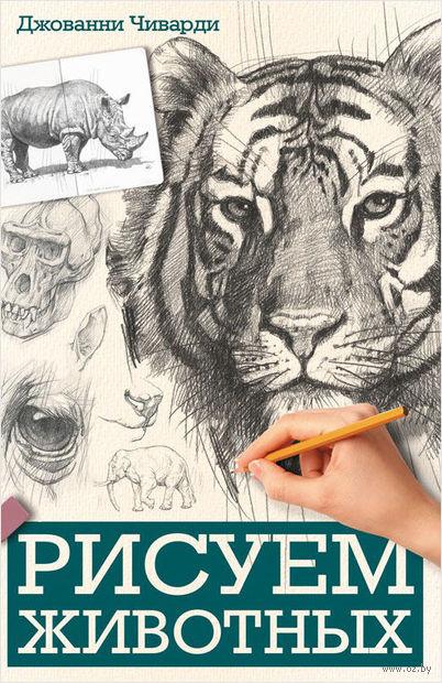 Рисуем животных — фото, картинка