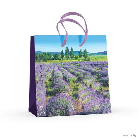 """Пакет бумажный подарочный """"Природа"""" (16,5x16,5x9,2 см) — фото, картинка"""