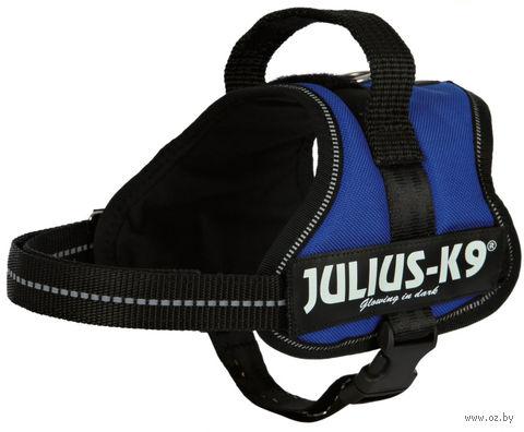"""Шлея тренировочная """"Julius-K9"""" (40-53 см; синяя) — фото, картинка"""