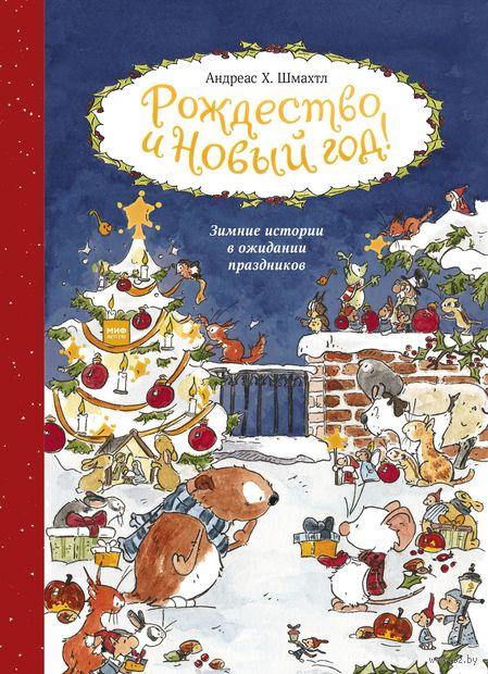 Рождество и Новый год! Зимние истории в ожидании праздников — фото, картинка