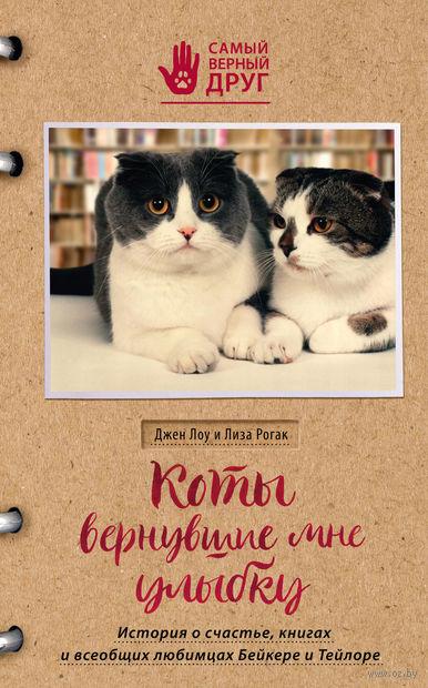 Коты, вернувшие мне улыбку. История о счастье, книгах и всеобщих любимцах Бейкере и Тейлоре — фото, картинка