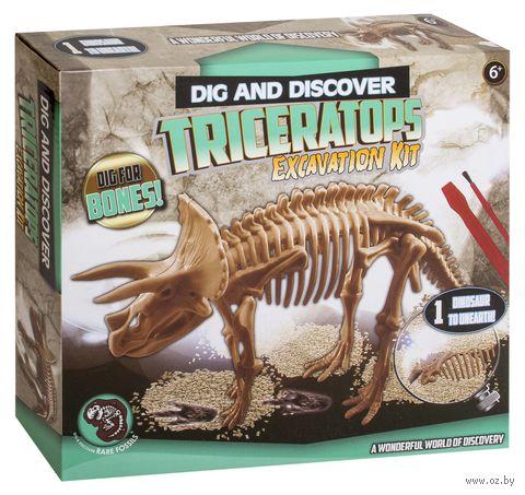 "Набор палеонтолога ""Раскопки динозавра"" (арт. DV-T-985) — фото, картинка"