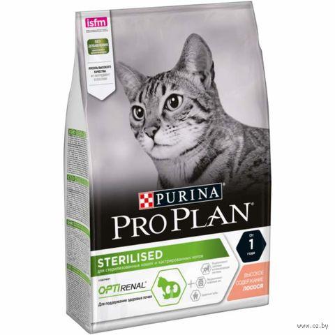 """Корм сухой для стерилизованных кошек """"Sterilised"""" (3 кг; лосось) — фото, картинка"""