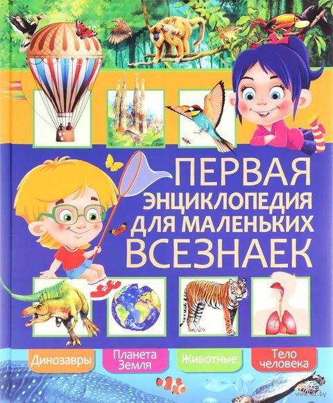 Первая энциклопедия для маленьких всезнаек — фото, картинка
