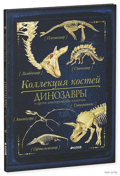 Коллекция костей. Динозавры и другие доисторические животные. Роб Колсон