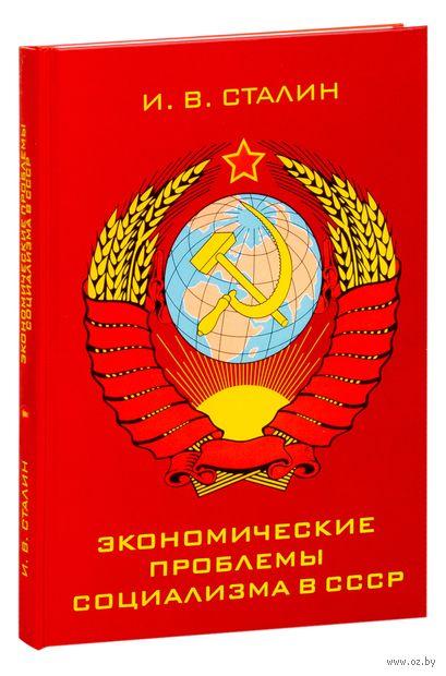 Экономические проблемы социализма в СССР — фото, картинка
