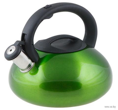 Чайник металлический со свистком (2,9 л; зеленый металлик) — фото, картинка