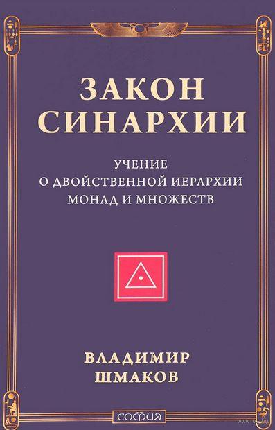 Закон синархии и учение о двойственной иерархии монад и множеств — фото, картинка