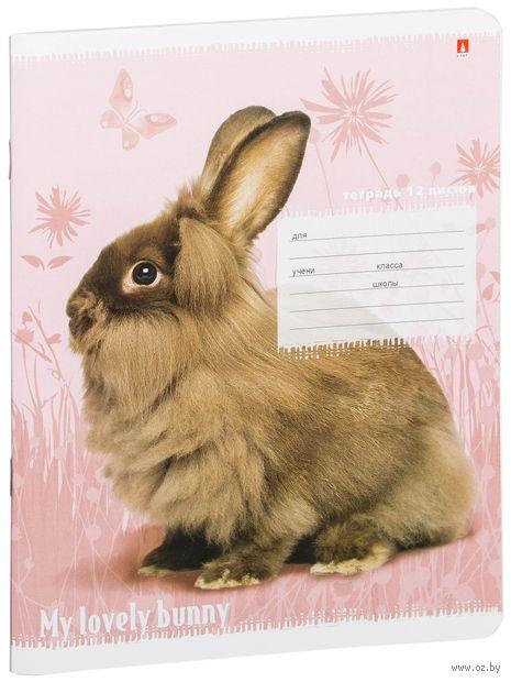 """Тетрадь в линейку """"Милые крольчата"""" (12 листов; в ассортименте) — фото, картинка"""