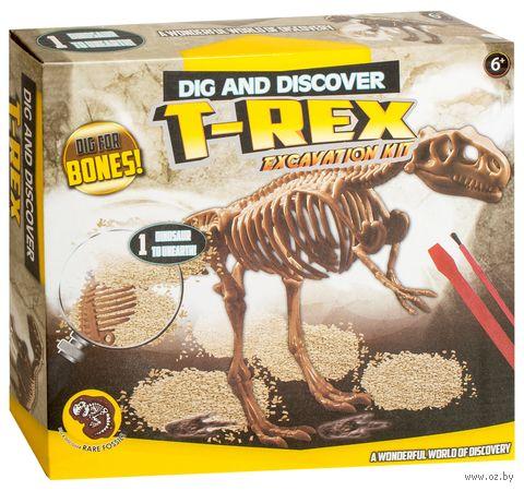 "Набор палеонтолога ""Раскопки динозавра"" (арт. DV-T-991) — фото, картинка"