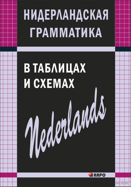 Нидерландская грамматика в таблицах и схемах — фото, картинка