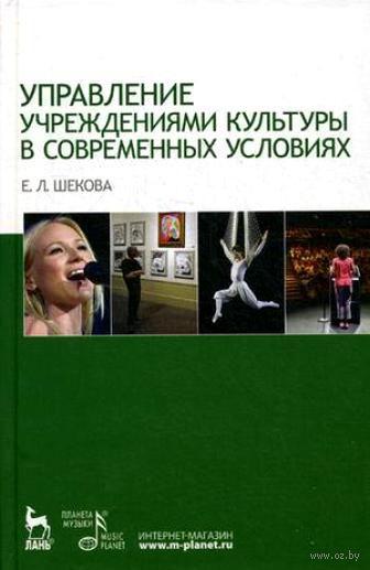 Управление учреждениями культуры в современных условиях. Екатерина Шекова