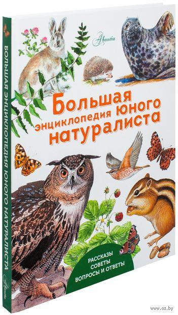 Большая энциклопедия юного натуралиста. Петр Волцит
