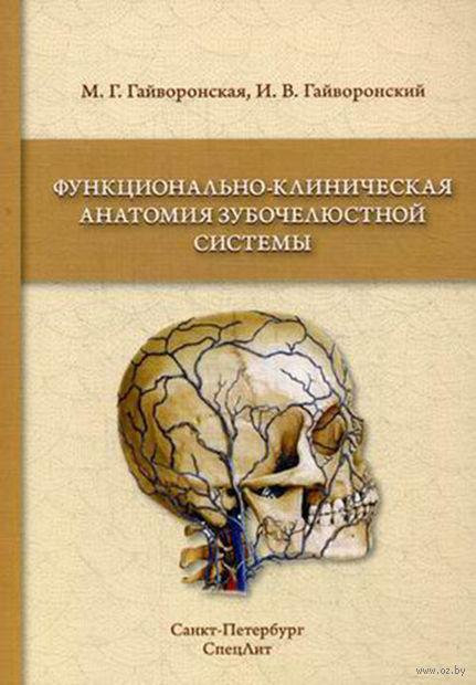 Функционально-клиническая анатомия зубочелюстной системы. Иван Гайворонский, Мария Гайворонская