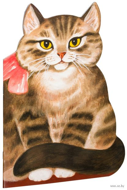 Котик-коток — фото, картинка
