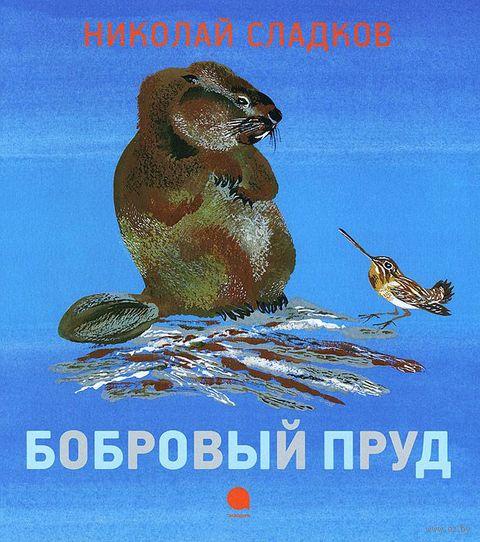 Бобровый пруд. Николай Сладков